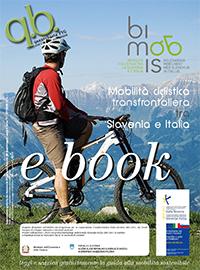 Scarica gratuitamente l'eBook della guida Bimobis